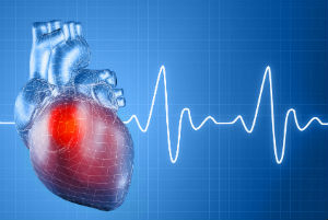 SSD for congenital heart defects